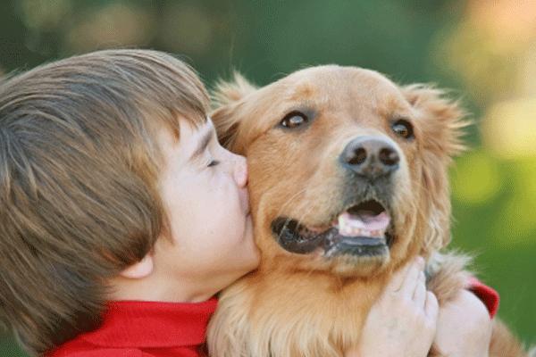 у детей, выросших с собакой реже развивается астма